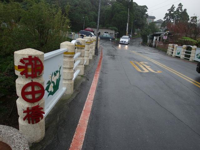 竹子湖步道  (282).JPG