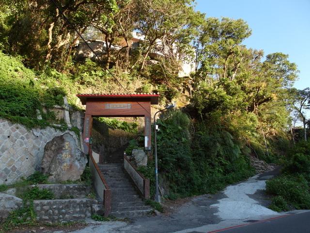 竹子湖步道  (303).JPG