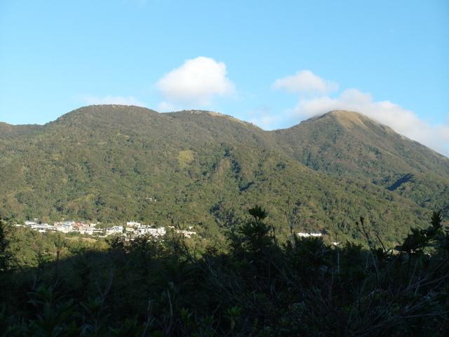 竹子湖步道  (304).JPG