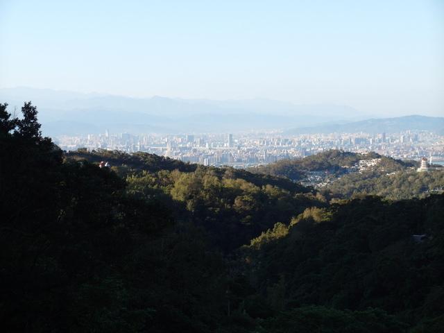 竹子湖步道  (305).JPG