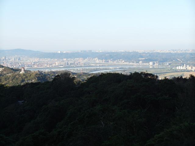 竹子湖步道  (306).JPG