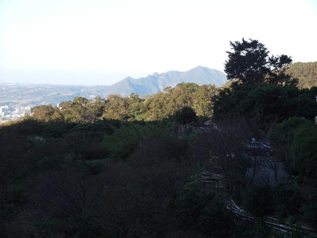 竹子湖步道  (307).JPG