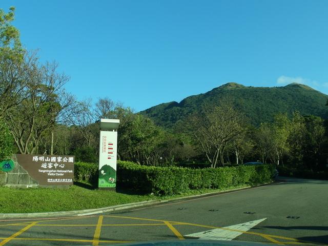 竹子湖步道  (310).JPG