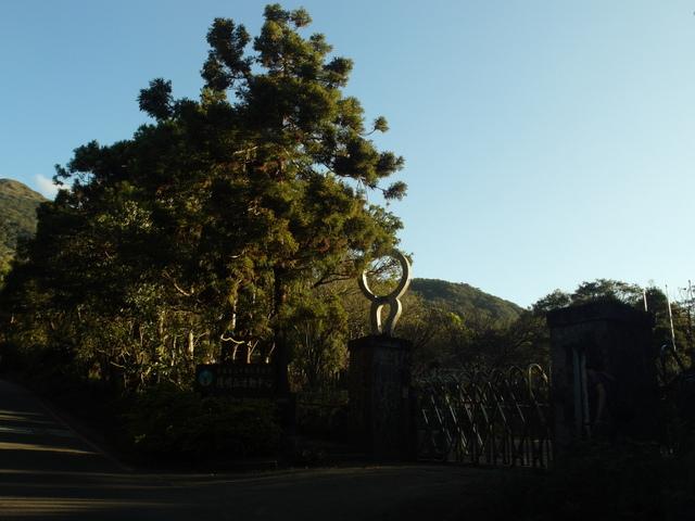 竹子湖步道  (312).JPG