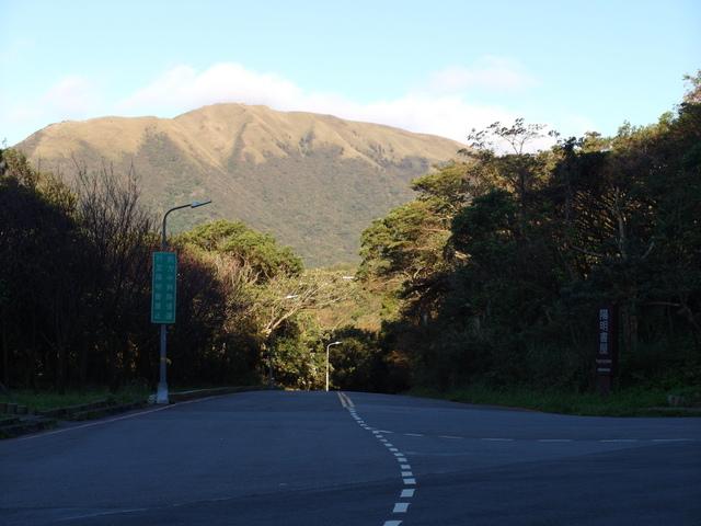 竹子湖步道  (313).JPG
