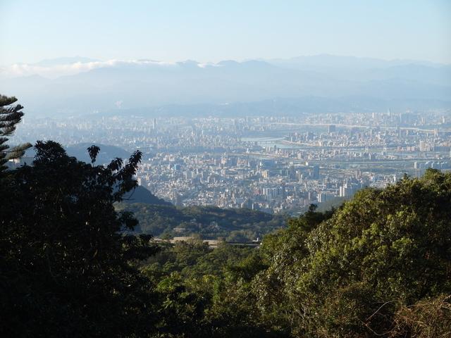 竹子湖步道  (315).JPG