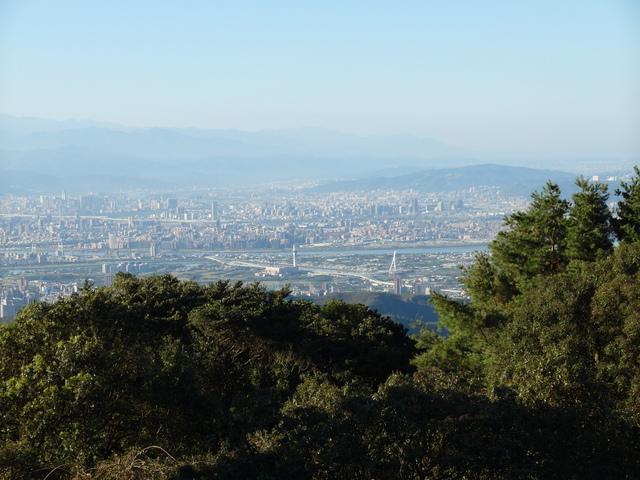 竹子湖步道  (316).JPG