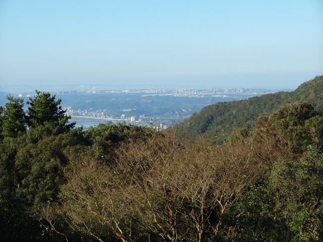 竹子湖步道  (317).JPG