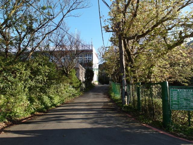 竹子湖步道  (327).JPG