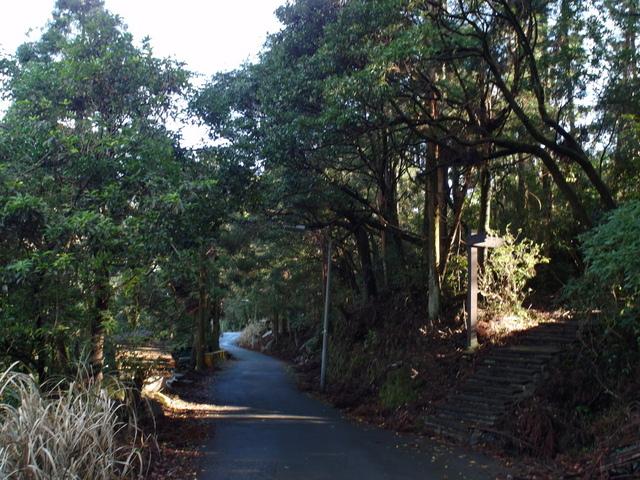 竹子湖步道  (350).JPG