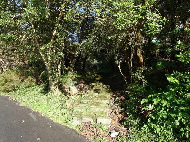 竹子湖步道  (355).JPG
