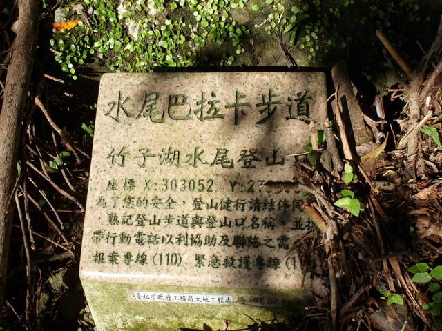 竹子湖步道  (356).JPG