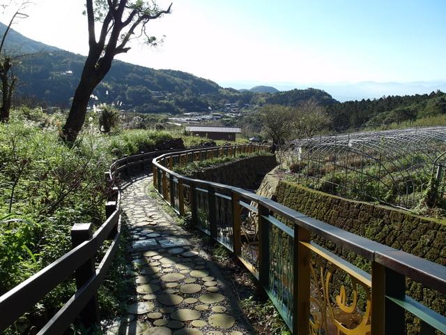 竹子湖步道  (370).JPG