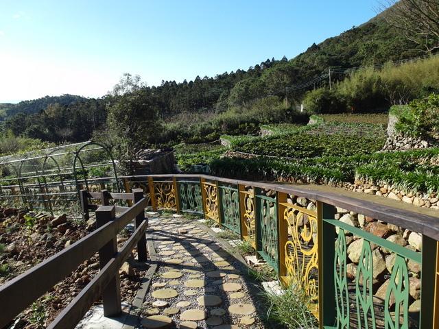 竹子湖步道  (371).JPG