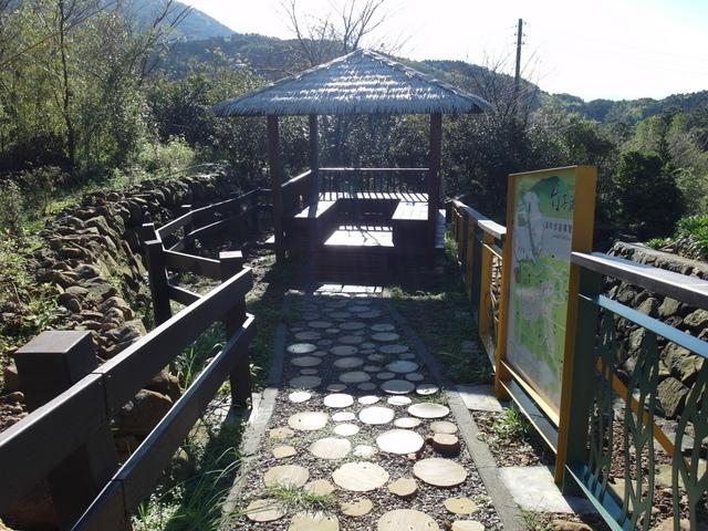 竹子湖步道  (372).JPG
