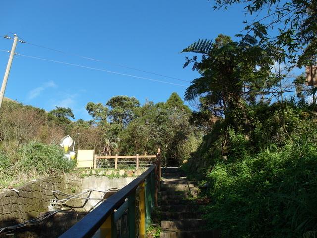 竹子湖步道  (384).JPG