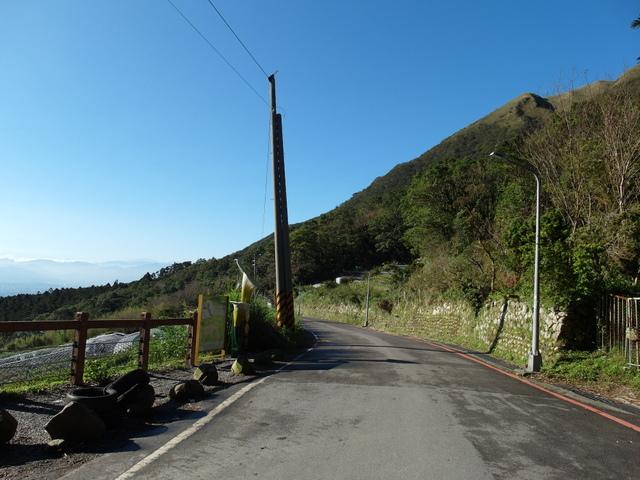 竹子湖步道  (385).JPG