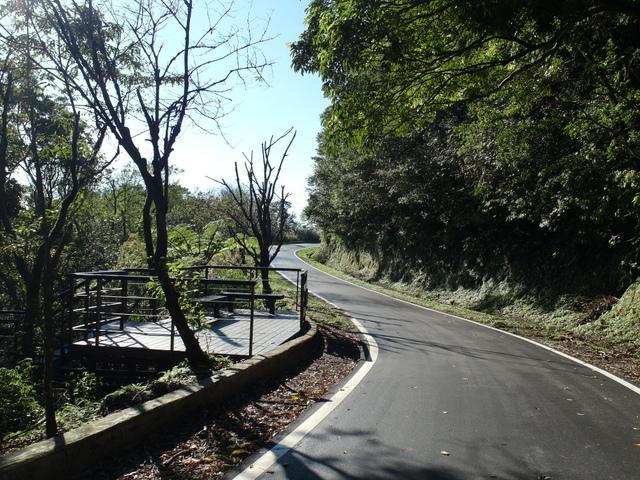 竹子湖步道  (387).JPG