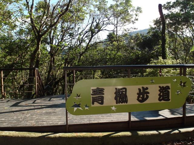 竹子湖步道  (388).JPG