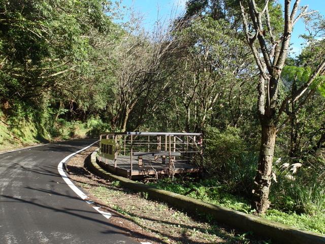 竹子湖步道  (389).JPG