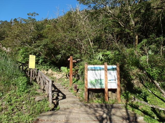 竹子湖步道  (392).JPG