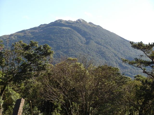 竹子湖步道  (394).JPG