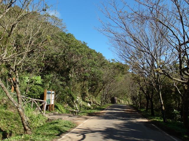 竹子湖步道  (395).JPG