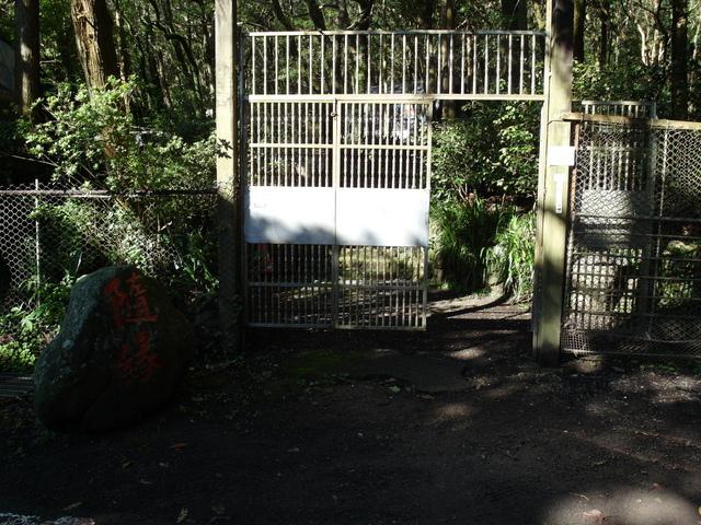 竹子湖步道  (401).JPG