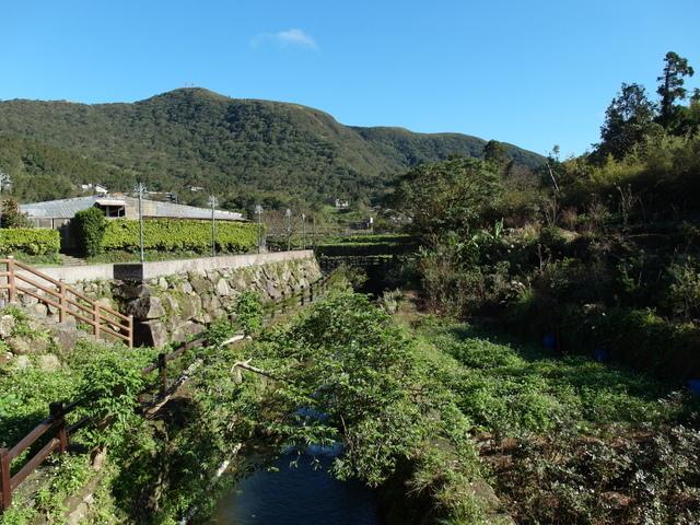竹子湖步道  (403).JPG