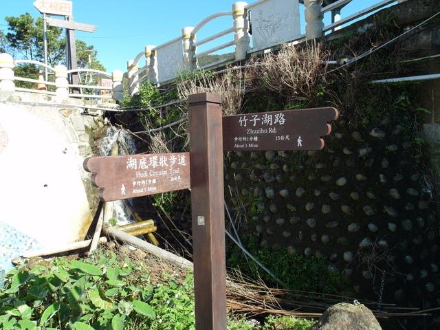 竹子湖步道  (408).JPG
