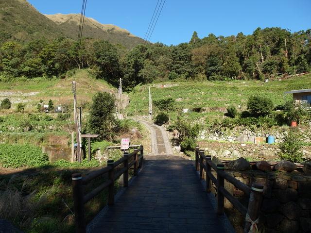 竹子湖步道  (414).JPG
