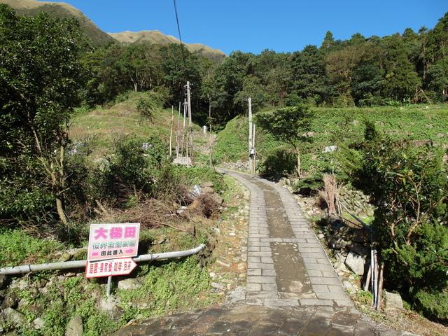 竹子湖步道  (416).JPG