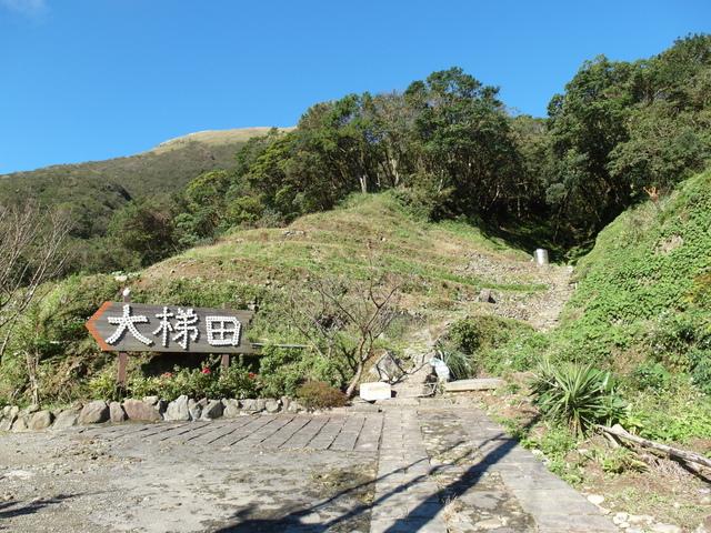 竹子湖步道  (419).JPG