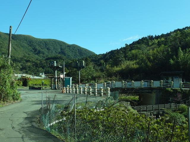 竹子湖步道  (426).JPG