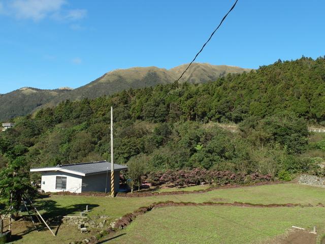 竹子湖步道  (435).JPG