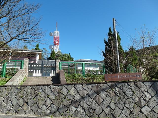 竹子湖步道  (437).JPG