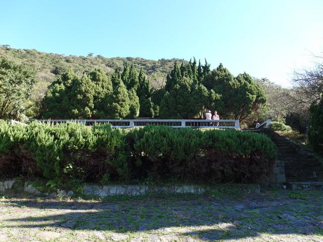 竹子湖步道  (439).JPG