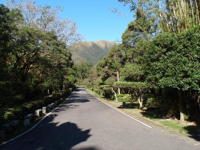 竹子湖步道  (453).JPG