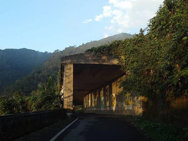油羅山 (157).JPG