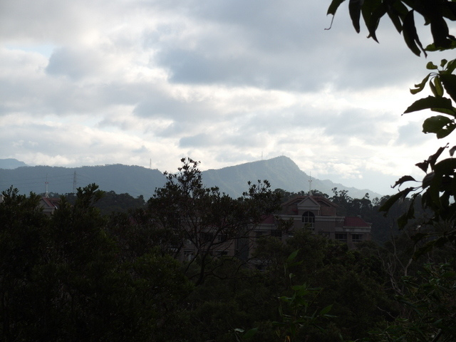 白鷺鷥山 (12).JPG