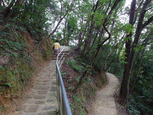 白鷺鷥山 (20).JPG