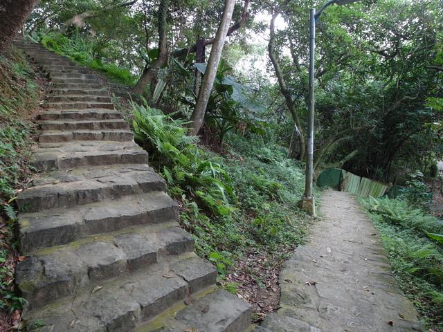 白鷺鷥山 (17).JPG