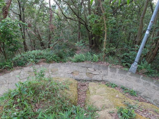 白鷺鷥山 (24).JPG