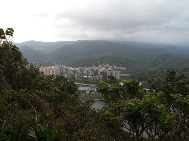 白鷺鷥山 (30).JPG