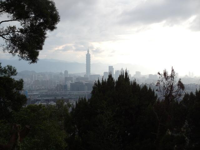 白鷺鷥山 (38).JPG