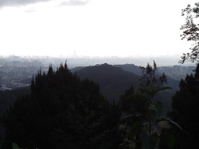 白鷺鷥山 (40).JPG