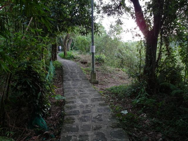 白鷺鷥山 (49).JPG