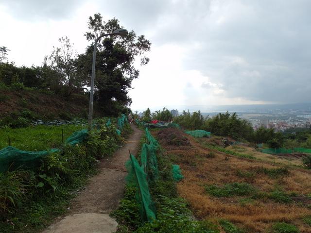 竹子湖步道 (464).JPG