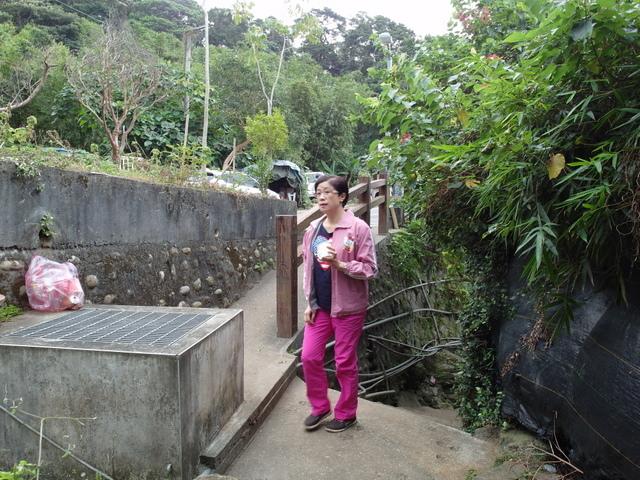 竹子湖步道 (469).JPG