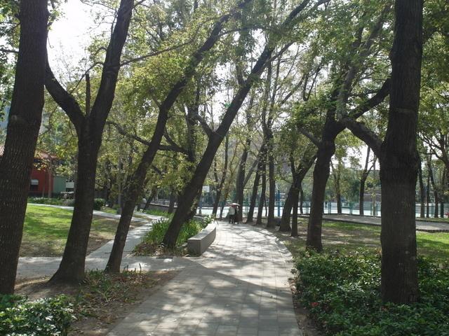 復興公園 (32).JPG